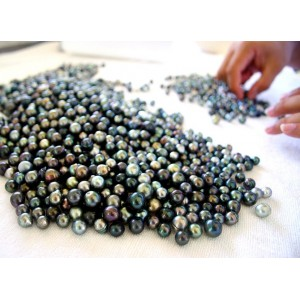 Learn more about the different types of pearls